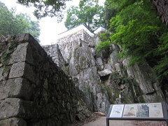 bichu-matuyama1.jpg