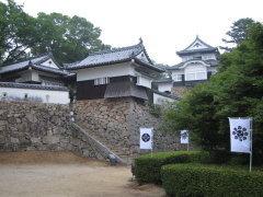 bichu-matuyama4.jpg